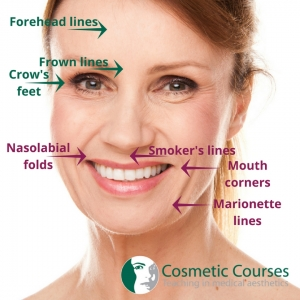 foundation botox and dermal filler treatments